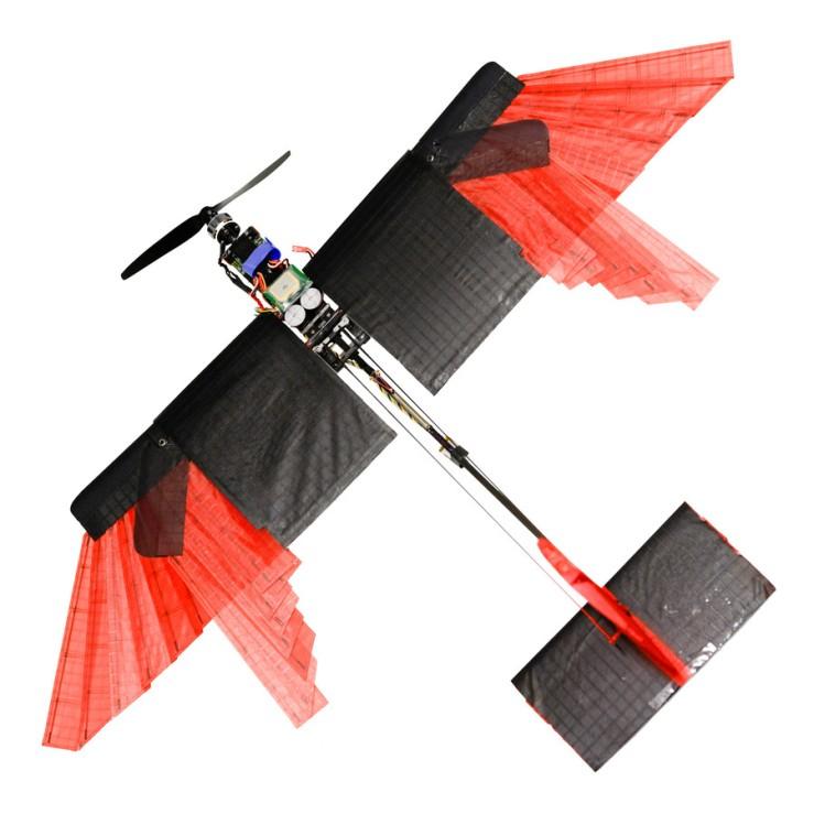 drone_bird